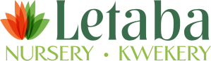 Letaba logo