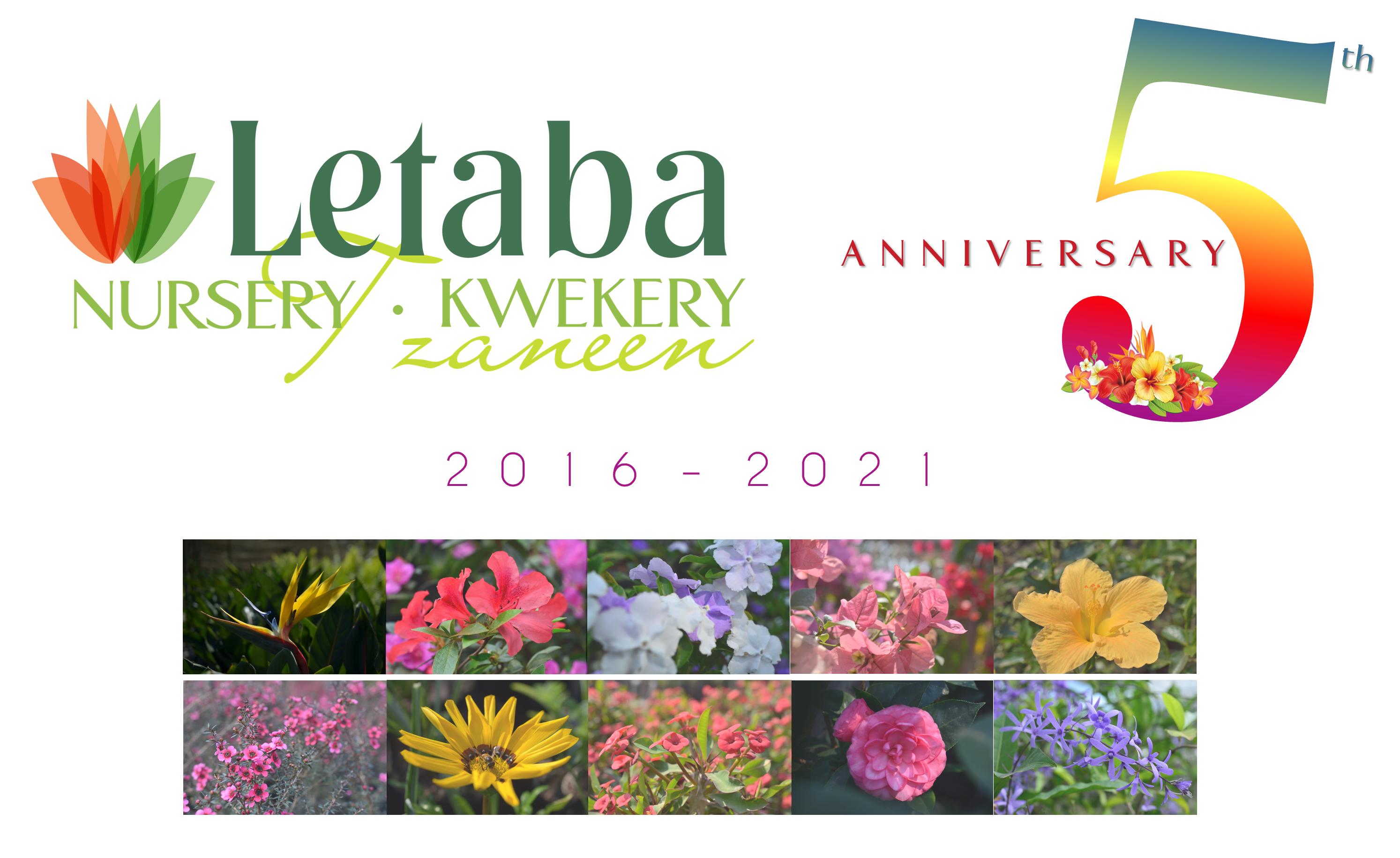 Letaba Kwekery (Pty) Ltd